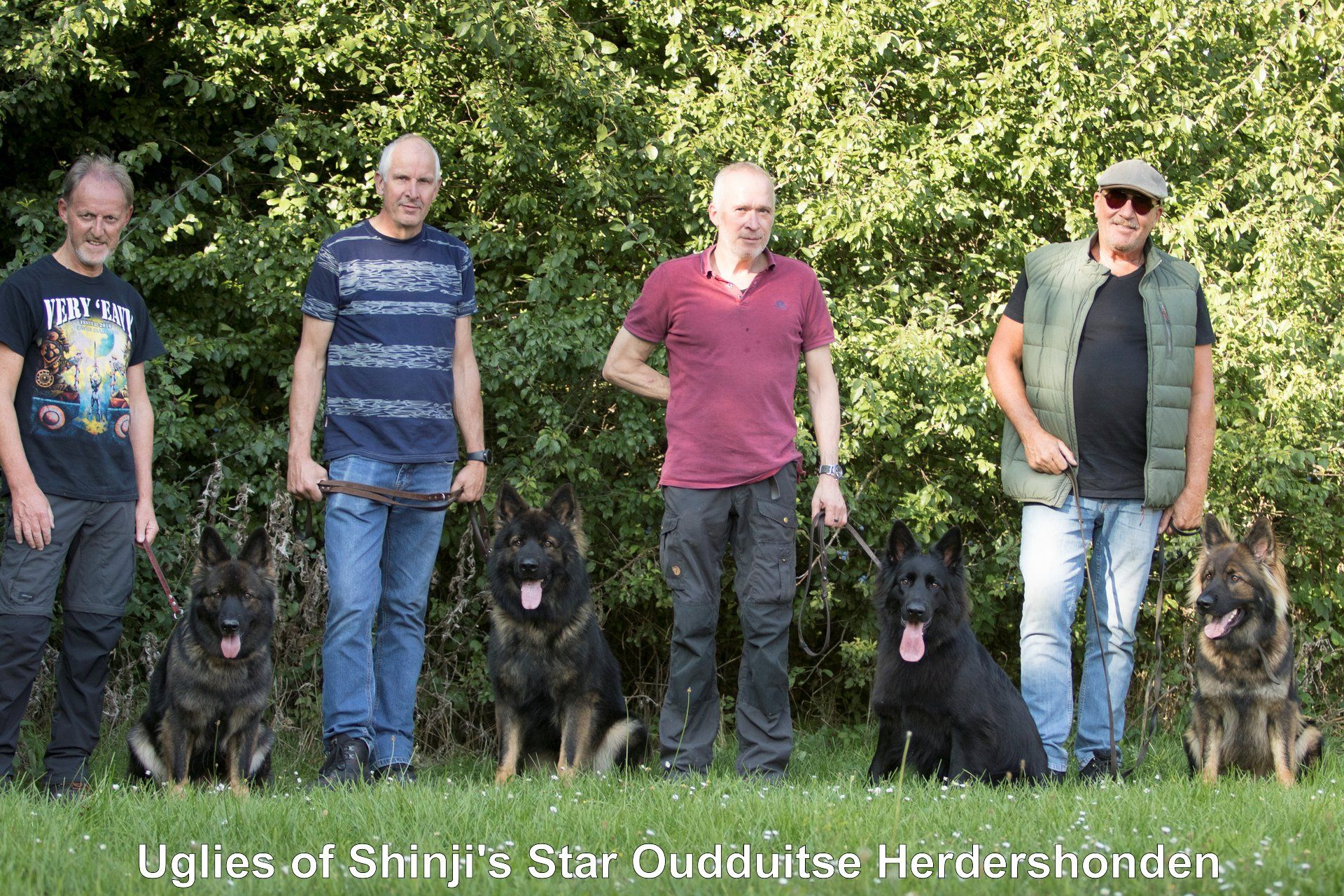 Oudduitse Herders Of Shinji's Star